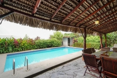 Pool area with thatch palmed deck with table and grill