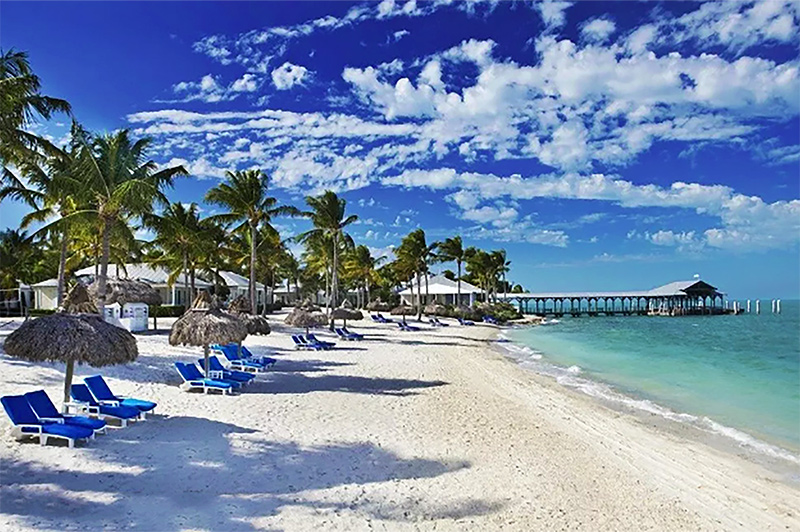 Dive into the exotic wilderness and beauty of the sunshine state-Florida | No Booking Fee